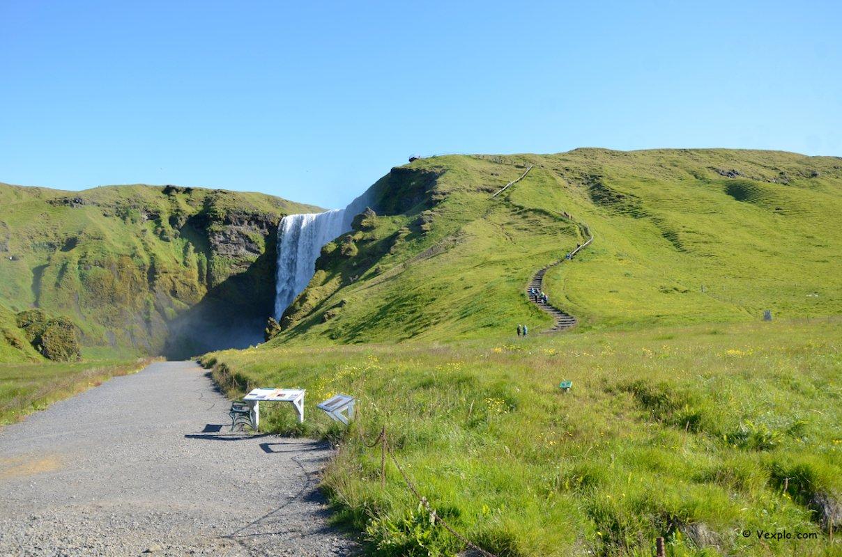 Fiori lungo il sentiero Fimmvðuhàls