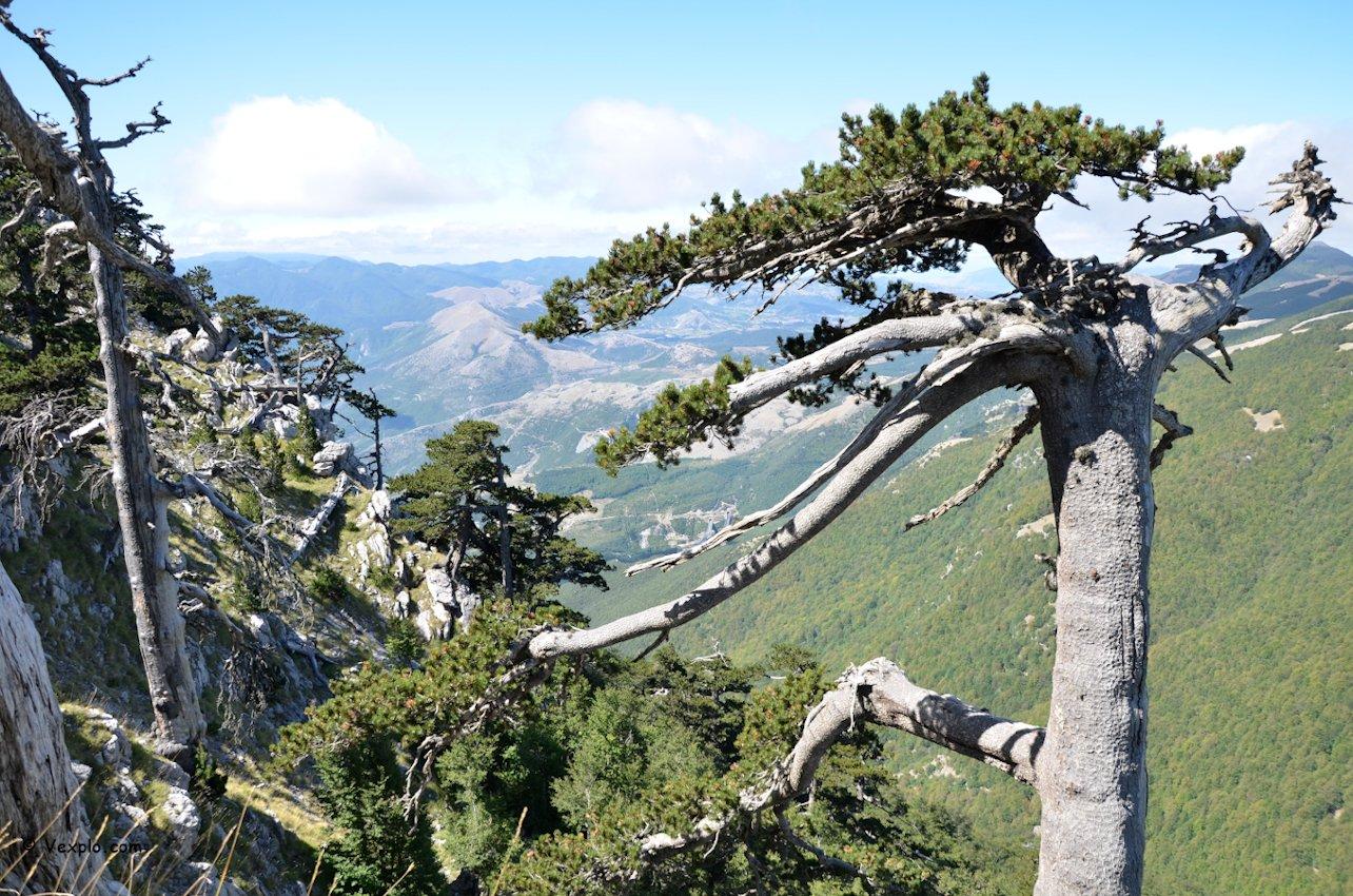 Il versante calabro dalla Dolina del Pollinello